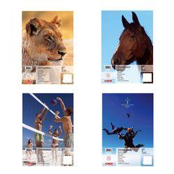 """Альбом для рисования формата A3  """"Животные """" 25 листов в ассортименте 4..."""